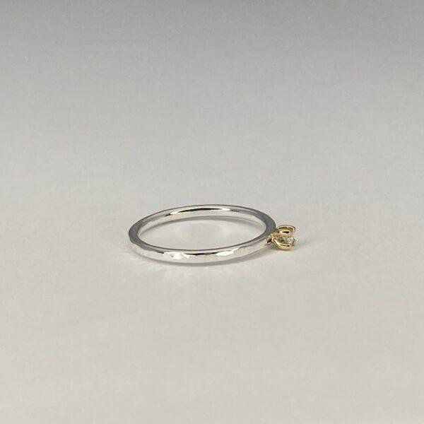 Tidløs ring